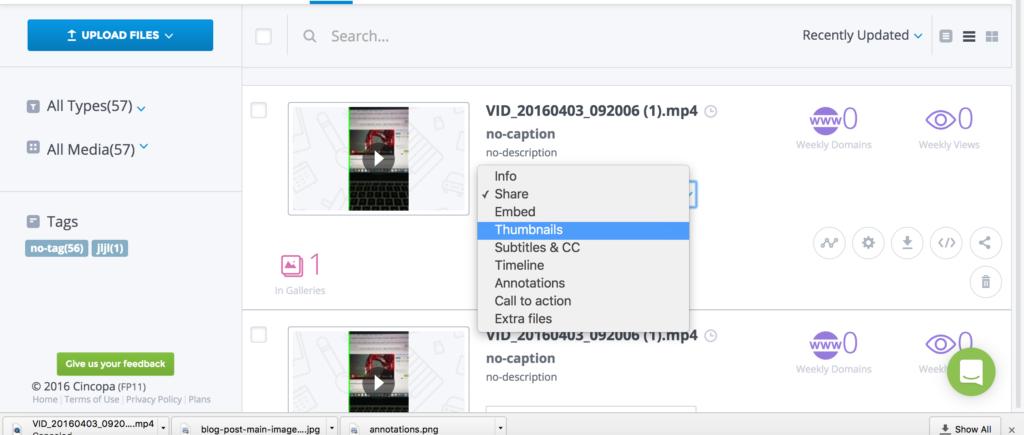 Add, delete or change video Thumbnail